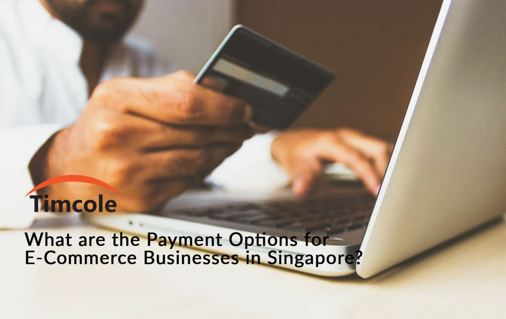 what-are-the-payment-options-for-e-commerce-businesses-in-singapore-timcole