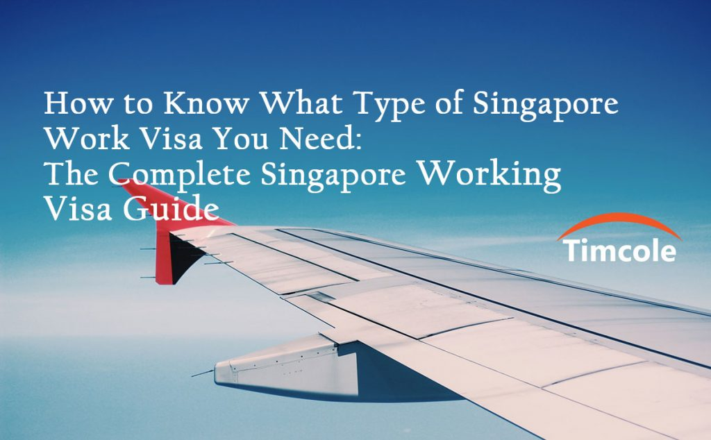 how-to-know-what-type-of-work-visa-you-need-the-complete-singapore-working-visa-guide-timcole