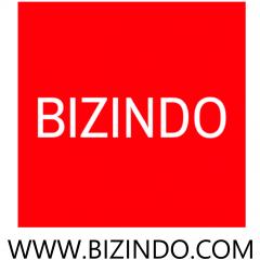 Logo Bizindo